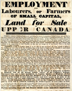 a description of irish immigration to canada Of the famine irish, many didn't stay in canada long they continued on to the united states those who did stay supplied a pool of cheap labour that helped fuel canada's economic expansion through the 1850's and 1860's.