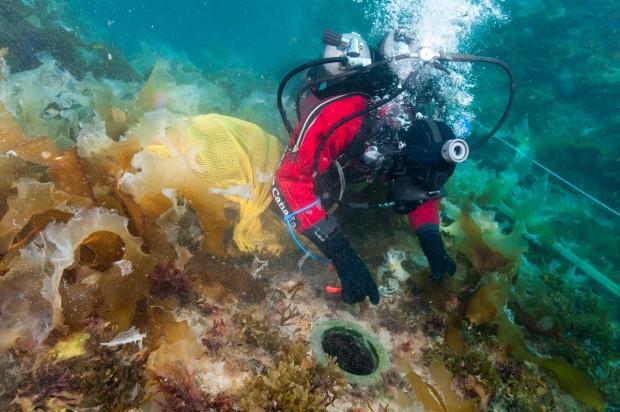 L'archéologue Charles Dagneau de Parcs Canada en plongée sur le HMS Erebus